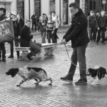 Levine_Walking the Dogs_Rome
